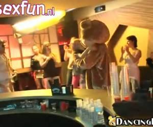 Dancing bear - chippendales die net iets verder gaan